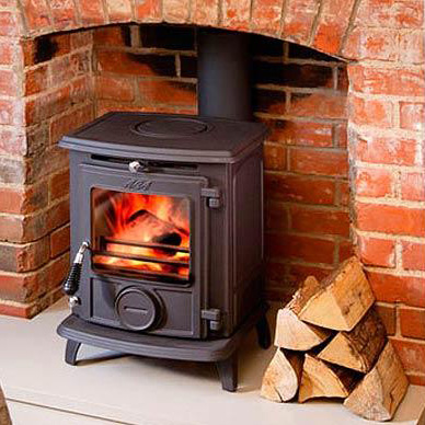 7 Best Wood Burning Stoves Reviews Buying Guide 2021