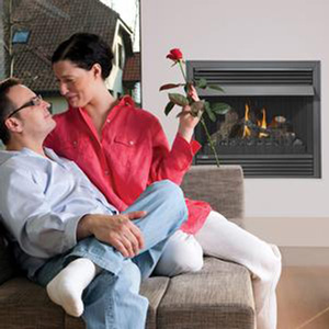 top-rated gas fireplace insert reviews
