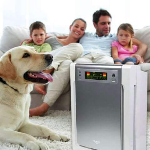 10 Best Air Purifiers For Pets Reviews Amp Buying Guide 2019
