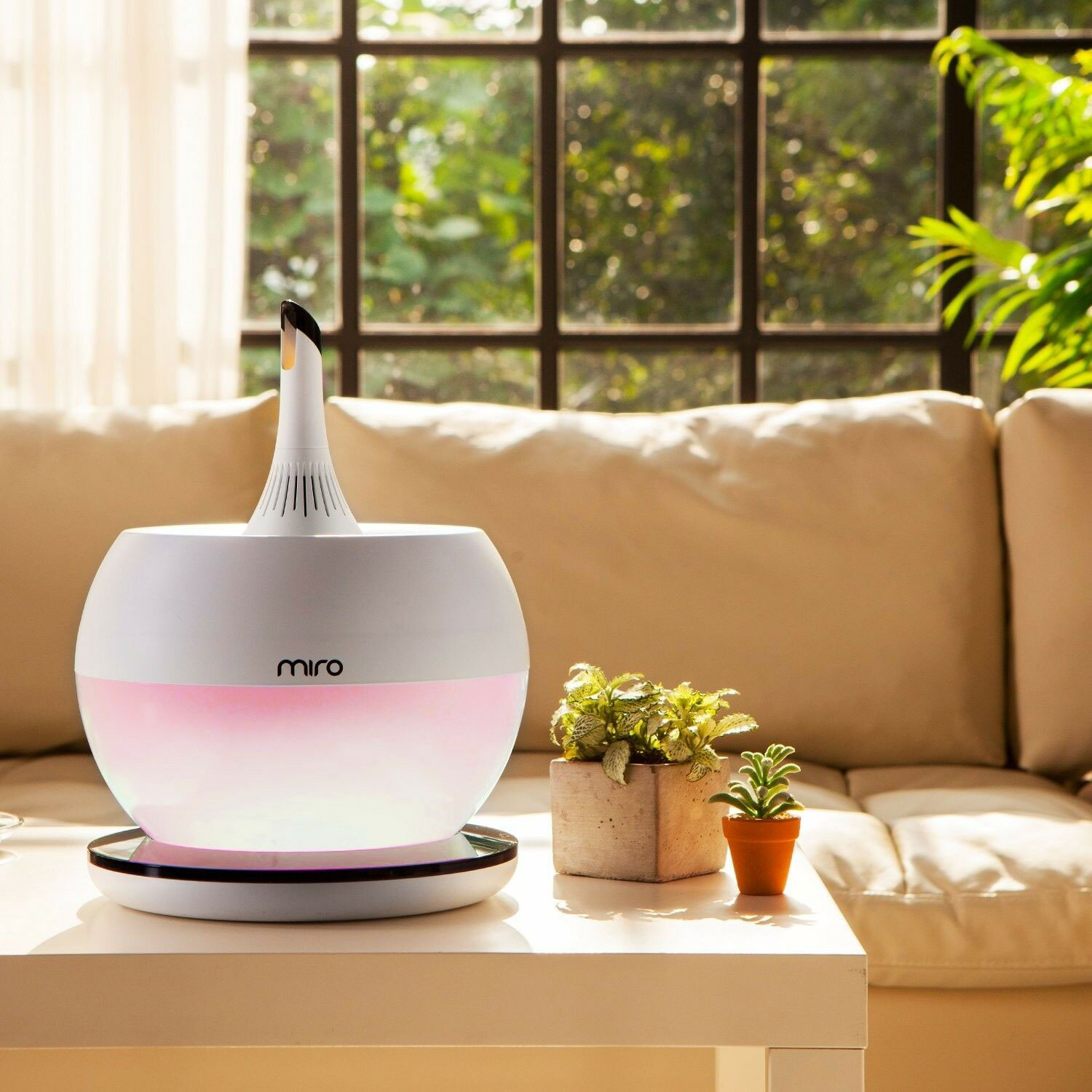 humidifier for allergy reviews